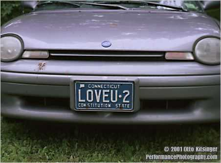 Live concert photo of license plate
